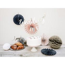 5 Abanicos lisos de colores rosas y grises